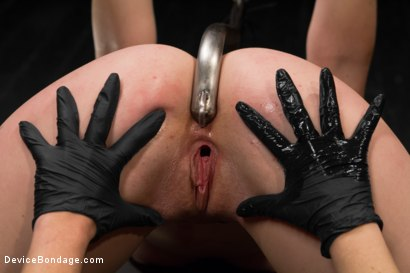 Photo number 2 from Jodi Taylor LIVE shot for Device Bondage on Kink.com. Featuring Jodi Taylor, Mz Berlin and Ivy Addams in hardcore BDSM & Fetish porn.