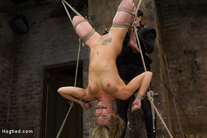 Photo number 15 from Mega Hottie Dahlia Sky shot for Hogtied on Kink.com. Featuring Dahlia Sky in hardcore BDSM & Fetish porn.