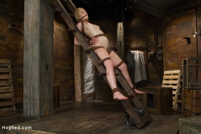 Photo number 14 from Tracey Sweet shot for Hogtied on Kink.com. Featuring Tracey Sweet in hardcore BDSM & Fetish porn.