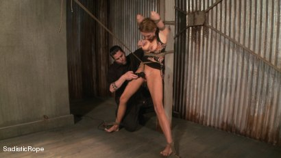 Photo number 16 from Hardcore Suffering and Brutal Orgasms shot for Sadistic Rope on Kink.com. Featuring Rain DeGrey in hardcore BDSM & Fetish porn.