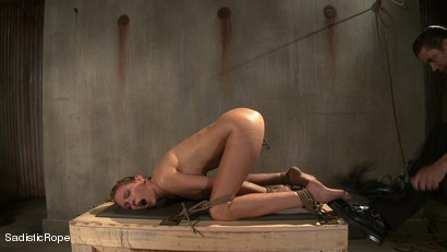 Photo number 7 from Hardcore Suffering and Brutal Orgasms shot for Sadistic Rope on Kink.com. Featuring Rain DeGrey in hardcore BDSM & Fetish porn.