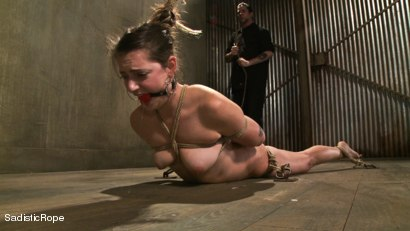 Photo number 4 from Please, Mister, No shot for Sadistic Rope on Kink.com. Featuring Missy Minks in hardcore BDSM & Fetish porn.