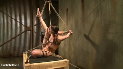 Photo number 8 from Please, Mister, No shot for Sadistic Rope on Kink.com. Featuring Missy Minks in hardcore BDSM & Fetish porn.
