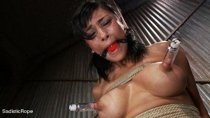 Photo number 12 from Slut Interrogation shot for Sadistic Rope on Kink.com. Featuring Beretta James in hardcore BDSM & Fetish porn.