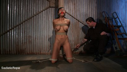 Photo number 5 from Slut Interrogation shot for Sadistic Rope on Kink.com. Featuring Beretta James in hardcore BDSM & Fetish porn.