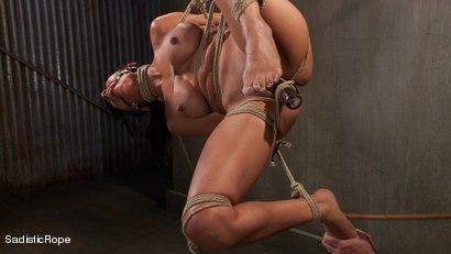 Photo number 9 from Slut Interrogation shot for Sadistic Rope on Kink.com. Featuring Beretta James in hardcore BDSM & Fetish porn.