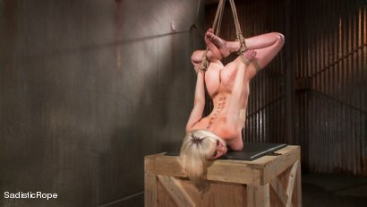 Photo number 14 from The Destruction of Cherry Torn shot for Sadistic Rope on Kink.com. Featuring Cherry Torn in hardcore BDSM & Fetish porn.