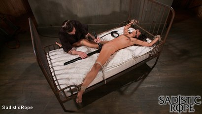 Photo number 7 from Brutality and Torment shot for Sadistic Rope on Kink.com. Featuring Lyla Storm in hardcore BDSM & Fetish porn.