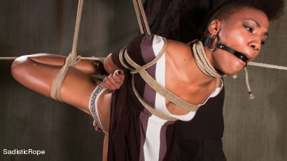 Photo number 1 from Total Domination shot for Sadistic Rope on Kink.com. Featuring Nikki Darling in hardcore BDSM & Fetish porn.