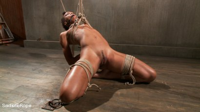 Photo number 5 from Total Domination shot for Sadistic Rope on Kink.com. Featuring Nikki Darling in hardcore BDSM & Fetish porn.