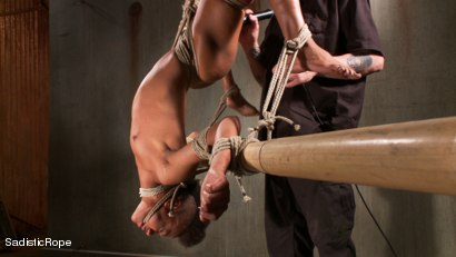 Photo number 7 from Total Domination shot for Sadistic Rope on Kink.com. Featuring Nikki Darling in hardcore BDSM & Fetish porn.