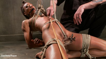 Photo number 8 from Total Domination shot for Sadistic Rope on Kink.com. Featuring Nikki Darling in hardcore BDSM & Fetish porn.