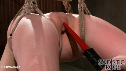 Photo number 8 from Taking a Piece of Pi shot for Sadistic Rope on Kink.com. Featuring Alani Pi in hardcore BDSM & Fetish porn.