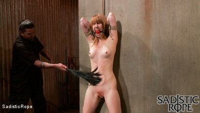 Photo number 15 from Fists of Fury shot for Sadistic Rope on Kink.com. Featuring Mallory Mallone in hardcore BDSM & Fetish porn.