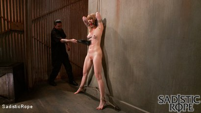 Photo number 6 from Fists of Fury shot for Sadistic Rope on Kink.com. Featuring Mallory Mallone in hardcore BDSM & Fetish porn.