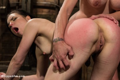 Photo number 7 from Juliette March gets Felony'd shot for Whipped Ass on Kink.com. Featuring Felony and Juliette March in hardcore BDSM & Fetish porn.