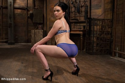 Photo number 8 from Juliette March gets Felony'd shot for Whipped Ass on Kink.com. Featuring Felony and Juliette March in hardcore BDSM & Fetish porn.