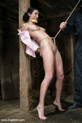 Photo number 3 from Sgt. Major and Wenona shot for Hogtied on Kink.com. Featuring Sgt. Major and Wenona in hardcore BDSM & Fetish porn.