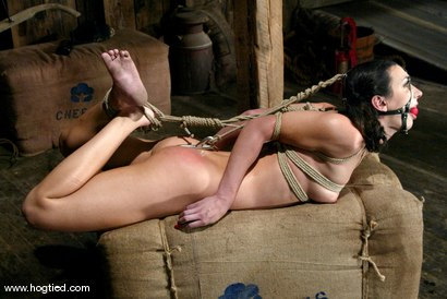 Photo number 12 from Sgt. Major and Wenona shot for Hogtied on Kink.com. Featuring Sgt. Major and Wenona in hardcore BDSM & Fetish porn.
