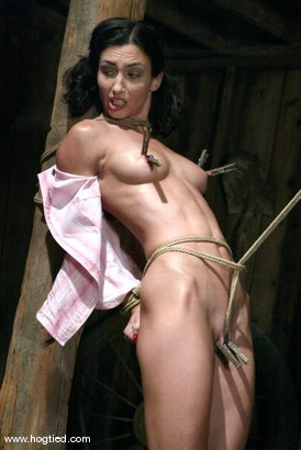 Photo number 2 from Sgt. Major and Wenona shot for Hogtied on Kink.com. Featuring Sgt. Major and Wenona in hardcore BDSM & Fetish porn.