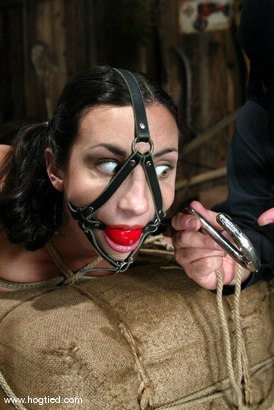 Photo number 10 from Sgt. Major and Wenona shot for Hogtied on Kink.com. Featuring Sgt. Major and Wenona in hardcore BDSM & Fetish porn.