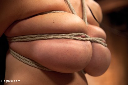 Photo number 12 from Busty California Blonde Courtney Gets Bent, Fucked & Challenged! shot for Hogtied on Kink.com. Featuring Courtney Taylor in hardcore BDSM & Fetish porn.