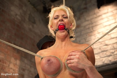 Photo number 5 from Busty California Blonde Courtney Gets Bent, Fucked & Challenged! shot for Hogtied on Kink.com. Featuring Courtney Taylor in hardcore BDSM & Fetish porn.