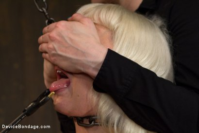 Photo number 14 from Claire & Orlando vs Lorelei & Cherry shot for Device Bondage on Kink.com. Featuring Orlando, Lorelei Lee and Cherry Torn in hardcore BDSM & Fetish porn.