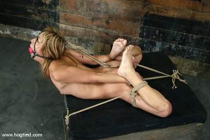 Photo number 6 from Kat shot for Hogtied on Kink.com. Featuring Kat in hardcore BDSM & Fetish porn.