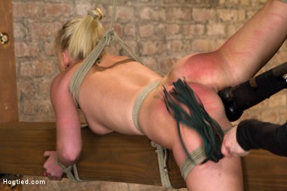 Photo number 9 from HOT girl next door tomboy gets bent in unforgiving bondage.  shot for Hogtied on Kink.com. Featuring Allie James in hardcore BDSM & Fetish porn.