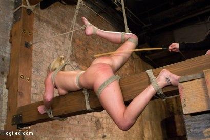 Photo number 10 from HOT girl next door tomboy gets bent in unforgiving bondage.  shot for Hogtied on Kink.com. Featuring Allie James in hardcore BDSM & Fetish porn.