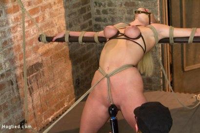 Photo number 12 from HOT girl next door tomboy gets bent in unforgiving bondage.  shot for Hogtied on Kink.com. Featuring Allie James in hardcore BDSM & Fetish porn.