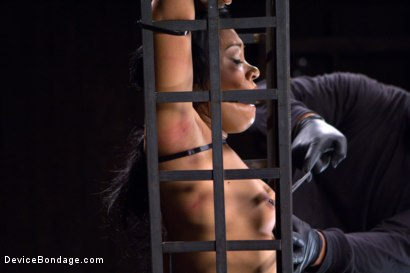Photo number 1 from Orlando vs Yasmine de Leon shot for Device Bondage on Kink.com. Featuring Yasmine de Leon and Orlando in hardcore BDSM & Fetish porn.