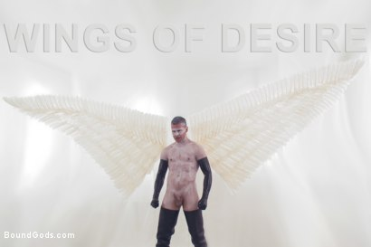 Wings of Desire - A Bound Gods Feature Presentation