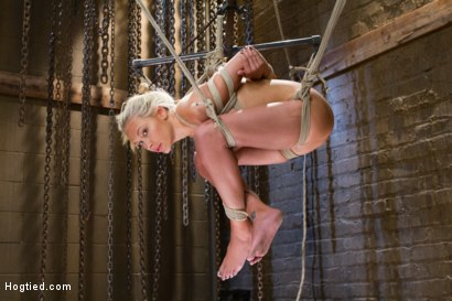 Photo number 6 from DyNaMiTe - Katie Summers Brings It - LIVE shot for Hogtied on Kink.com. Featuring Katie Summers in hardcore BDSM & Fetish porn.