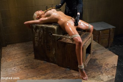 Photo number 11 from DyNaMiTe - Katie Summers Brings It - LIVE shot for Hogtied on Kink.com. Featuring Katie Summers in hardcore BDSM & Fetish porn.