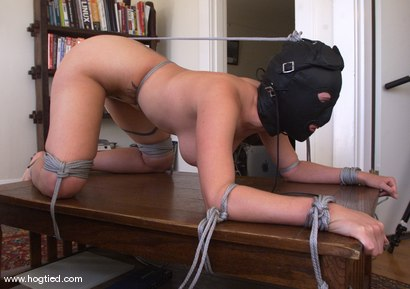 Photo number 3 from Dusty shot for Hogtied on Kink.com. Featuring Dusty in hardcore BDSM & Fetish porn.