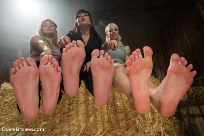 Photo number 2 from ******BONUS******* FULL FOOT WORSHIP FEATURE! Faster Pussyfoot Kill! Kill! shot for Divine Bitches on Kink.com. Featuring Lorelei Lee, Missy Minks, Lea Lexis, Mahina Zaltana and Lance Hart in hardcore BDSM & Fetish porn.