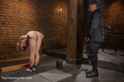 Photo number 6 from Training a Porno Slut to Fuck Better, Day Two shot for The Training Of O on Kink.com. Featuring Dahlia Sky, Rob Blu and Marshal in hardcore BDSM & Fetish porn.