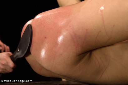 Photo number 12 from Claire Adams vs Dahlia Sky shot for Device Bondage on Kink.com. Featuring Dahlia Sky in hardcore BDSM & Fetish porn.
