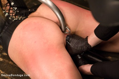 Photo number 2 from Claire Adams vs Dahlia Sky shot for Device Bondage on Kink.com. Featuring Dahlia Sky in hardcore BDSM & Fetish porn.