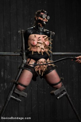 Photo number 15 from Siouxsie Q vs Claire Adams shot for Device Bondage on Kink.com. Featuring Siouxsie Q in hardcore BDSM & Fetish porn.