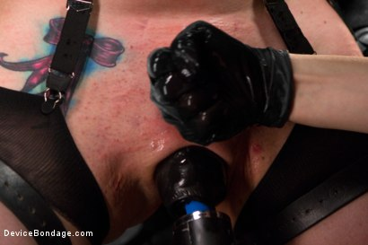 Photo number 1 from Siouxsie Q vs Claire Adams shot for Device Bondage on Kink.com. Featuring Siouxsie Q in hardcore BDSM & Fetish porn.