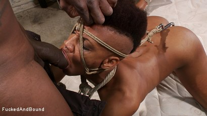 Photo number 11 from Brutal Ass Fucking shot for Fucked and Bound on Kink.com. Featuring Jack Hammer and Nikki Darling in hardcore BDSM & Fetish porn.