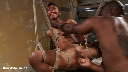 Photo number 3 from Brutal Ass Fucking shot for Fucked and Bound on Kink.com. Featuring Jack Hammer and Nikki Darling in hardcore BDSM & Fetish porn.