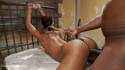 Photo number 5 from Brutal Ass Fucking shot for Fucked and Bound on Kink.com. Featuring Jack Hammer and Nikki Darling in hardcore BDSM & Fetish porn.