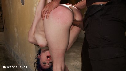 Photo number 5 from Anal Fuck Fest shot for Brutal Sessions on Kink.com. Featuring Mickey Mod and Proxy Paige in hardcore BDSM & Fetish porn.