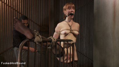 Photo number 11 from Masochistic Seduction shot for Fucked and Bound on Kink.com. Featuring Mickey Mod and Mallory Mallone in hardcore BDSM & Fetish porn.