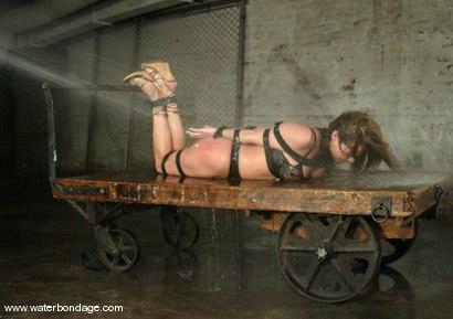 Photo number 2 from Sasha Sparks shot for Water Bondage on Kink.com. Featuring Sasha Sparks in hardcore BDSM & Fetish porn.