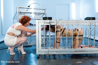 Photo number 14 from Audrey Hollander and Mz Berlin Get Worshipped, Electrosluts Style! shot for Electro Sluts on Kink.com. Featuring Mz Berlin, Bianca Stone and Audrey Hollander in hardcore BDSM & Fetish porn.